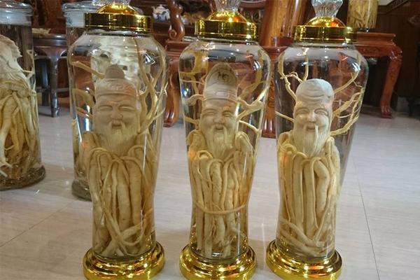 Bình rượu Đinh lăng điêu khắc Gia Lai