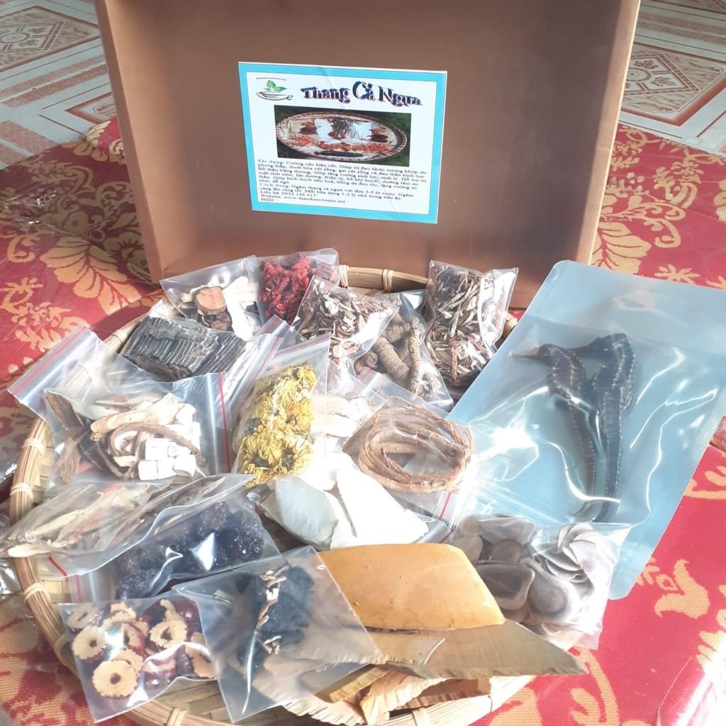 Bài thuốc cá ngựa Đồng Nai